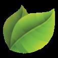 MyGarden icon